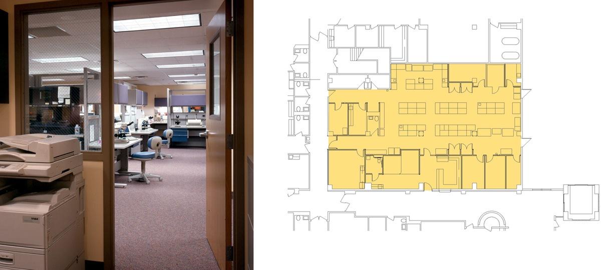 plant tissue culture laboratory design layout pdf